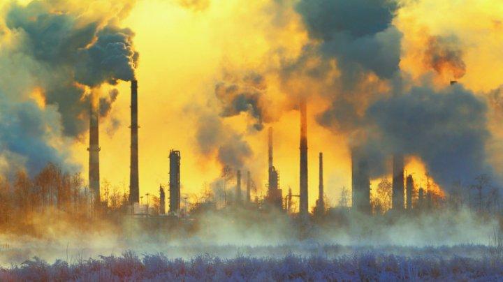 În Marea Britanie s-a înregistrat primul caz de moarte provocat de poluarea aerului