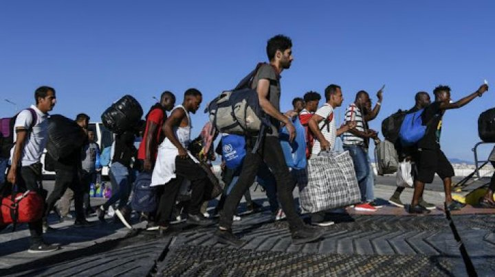 Pandemia a încetinit migrația cu aproape 30%