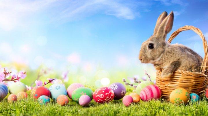 Mesaje de Paște. Urări și felicitări de Paște