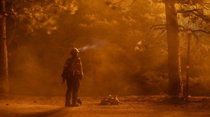Un sequoia uriaș din California continuă să fumege, după incendiul de vegetaţie din 2020