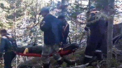 TRAGEDIE. Un adolescent de 16 ani a murit după ce a fost atacat de un urs