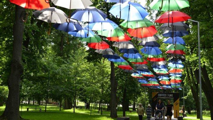 Ediţia din acest an al Festivalului Umbrelelor are loc în parcul Alunelul. Sunt aşteptaţi toţi doritorii de a face poze