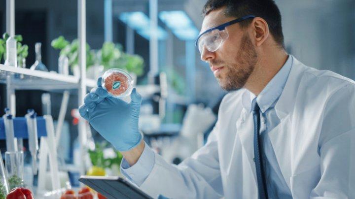 """""""Carne pentru vegani"""": Un restaurant din Israel servește pui artificial, făcut în laborator"""