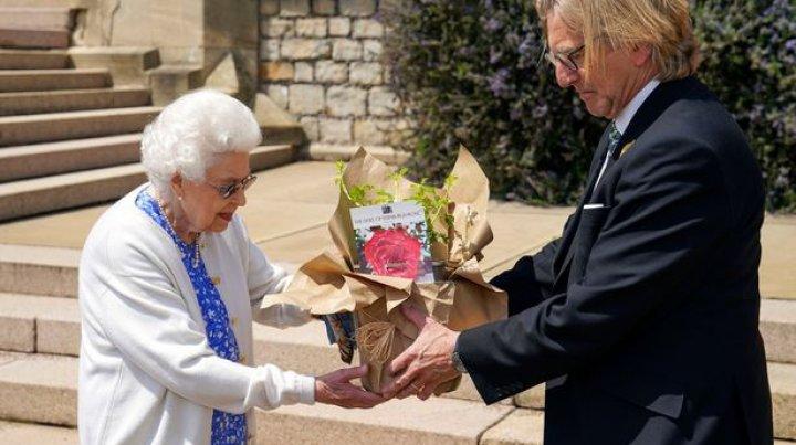 Regina Elisabeta a primit în dar o specie nouă de trandafir, în memoria regretatului ei soţ