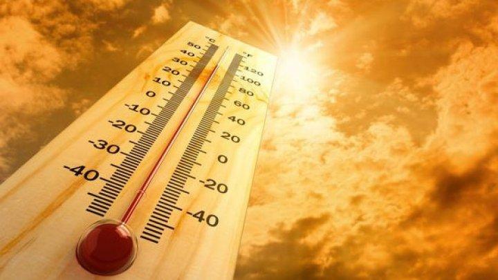 Temperaturi caniculare. A fost una din trei cele mai fierbinți luni iulie în 30 de ani
