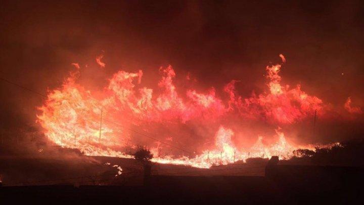 Incendiile forestiere din sudul Turciei au ajuns în stațiunile turistice. Mai multe hoteluri au fost evacuate