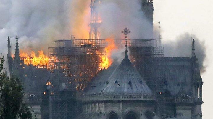 La peste doi ani de la incendiul de la Notre-Dame, poluarea cu plumb, peste limite. Primăria Parisului, dată în judecată
