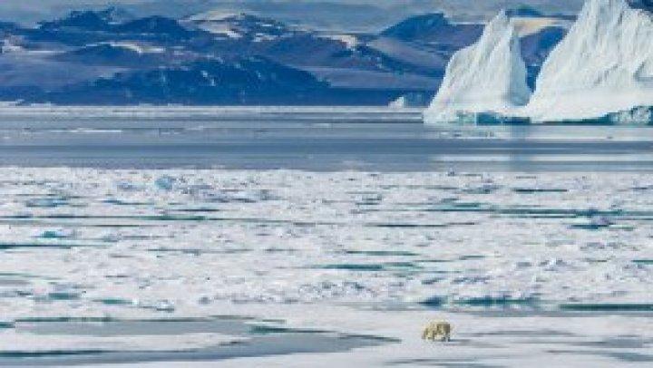 Ce iese la iveală de sub gheața care se topește în regiunea arctică a Rusiei