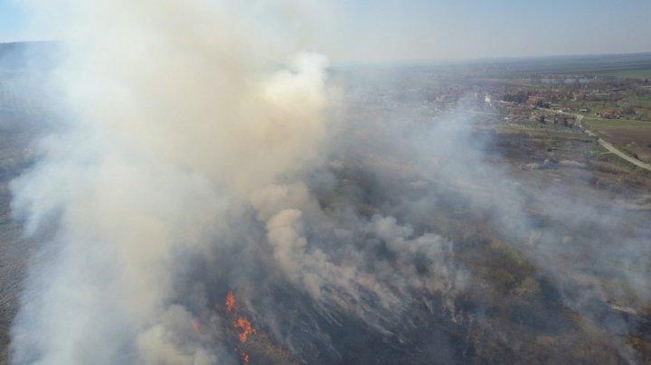 Incendiile de vegetaţie fac ravagii în unele zonele ale Bulgariei. Valul de căldură alimentează focul