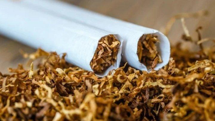 Nicotina: înţelegerea rolului şi a impactului ei în legătură cu fumatul
