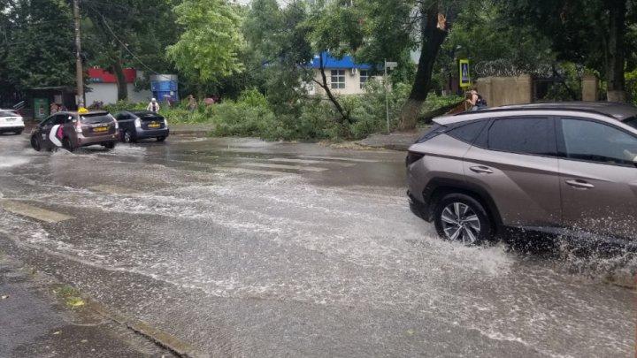 Imagini de GROAZĂ în Capitală. Furtuna a doborât mai mulți copaci, iar circulația pe străzi a fost blocată