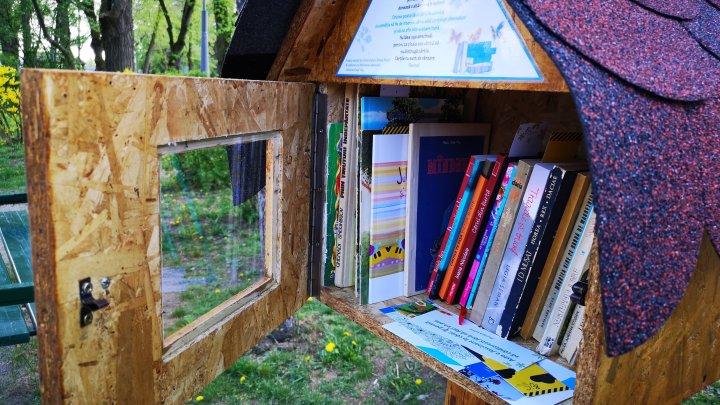 Bibliotecă în aer liber la Durlești. Inițiativa voluntarilor salutată de localnici