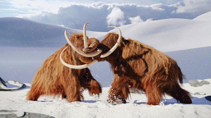 O companie de bioștiințe susține că va readuce la viață mamutul lânos