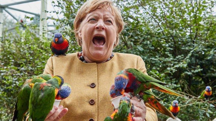 IMAGINEA ZILEI cu Angela Merkel. Cancelarul german a vizitat parcul de păsări din orașul Marlow (FOTO)