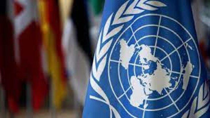 Comisia parlamentară de profil a aprobat noi ambasadori la ONU şi Consiliul Europei. Cine sunt aceştia