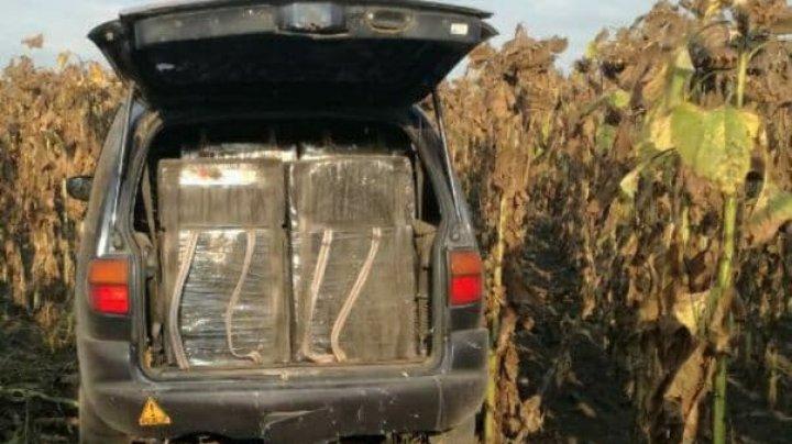 Un șofer a vrut să scape de Poliție, dar a derapat într-un lan cu floarea-soarelui. Avea în maşină 12 mii de pachete de țigări