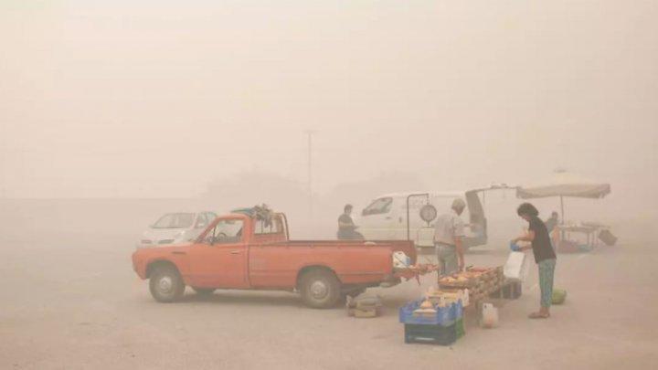 Incendiile din această vară au condus la un nou RECORD de emisii de carbon