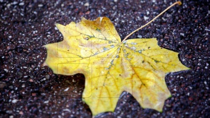 METEO 22 septembrie: Meteorologii au emis cod galben de îngheţuri. Ce tempetaruri vom avea în termometre