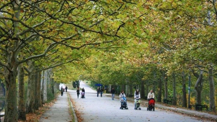 Lipsă de confort, dar și de siguranță într-un parc din Capitală. Autoritățile promit să remedieze situația