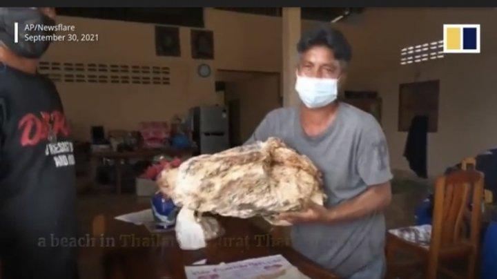 Un pescar s-a îmbogățit după ce a găsit 30 de kilograme de vomă de balenă