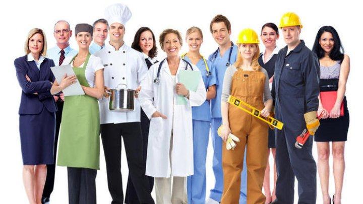Topul celor mai bine plătite și căutate locuri de muncă din Republica Moldova