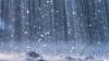 В связи с продолжительными дождями, синоптики прогнозируют повышение уровня паводка