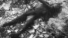 Обгоревший труп обнаружен в лесопосадке вблизи кишиневского аэропорта