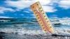 В мексиканском городе Канкун принят план против глобального потепления, стоимостью 100 миллиардов долларов