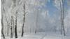 Погода на 20 декабря 2010