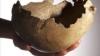 Британские ученые нашли чаши-черепа