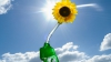 Британские исследователи разрабатывают водородное топливо