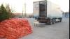 20 тонн контрабандного спирта, замаскированные тонной лука