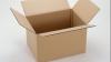 Картонные коробки вместо избирательных урн