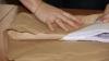 Пересчёт голосов, отданных за муниципальный совет Кишинёва, ОТЛОЖЕН