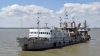 Государство заберет у джурджулештских крестьян 65 га угодий для расширения порта