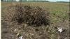 От вчерашних дождей пострадало 7 населенных пунктов Молдовы