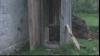 Дискуссии о туалетах в Котул Морий достигли правительства