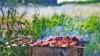 Молдаване отметили «Limba Noastră» на … природе с шашлыками