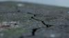 Землетрясение магнитудой 5,7 баллов произошло на юго-западе Пакистана