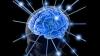 Британские ученые считают, что  природные возможности человеческого мозга исчерпаны