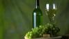 Лазэр: Российский рынок перестал быть ключевым для виноделов Молдовы
