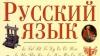 Башкан Гагаузии требует, чтобы все документы из Кишинева переводили на русский язык