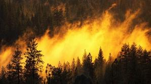 До 28 сентября сохраняется предупреждение о высокой вероятности пожаров