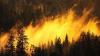 Теплая осень - причина многочисленных пожаров