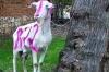 Арестована коза-агитатор