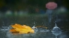 Жёлтый уровень метеоопасности остаётся в силе