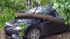 В Китае – дожди, в Австралии – шторм с градом, в Таиланде – нашествие рептилий