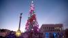 В Киеве начались монтажные работы по установке новогодней елки