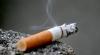 Страны Евросоюза перейдут на противопожарные сигареты