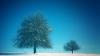 Погода на 25 декабря 2011